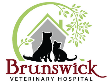 Brunswick Veterinary Hospital
